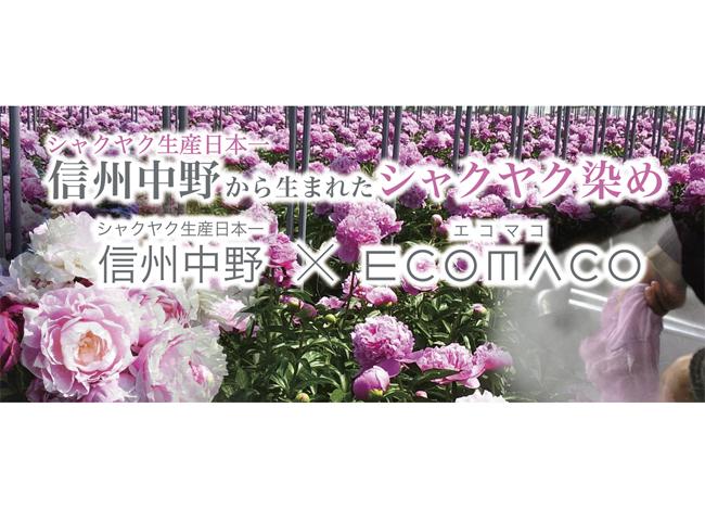 《光のカケラプロジェクト》信州中野いきいき館でシャクヤク染めグッズの販売を開始